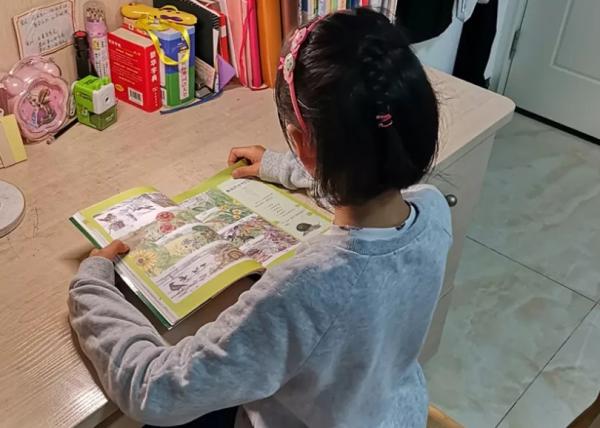 深圳小升初补习班让考试变得如此简单