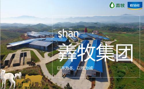 羴牧汇聚科研力量打造全产业链,以纯羊欧铂佳为中国宝宝加油!