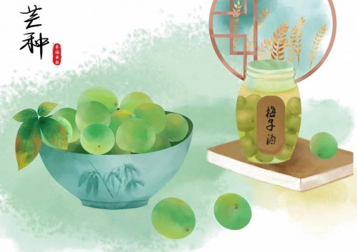 6.6中国青梅节:溜溜梅开启直播狂欢派对,享受节日喜悦