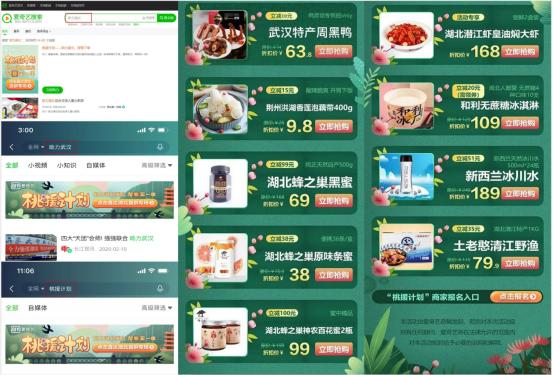 """品效双驱动,爱奇艺""""线上桃源""""助力湖北企业渡关"""